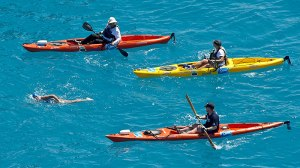 In this photo provided by the Florida Keys News Bureau, Diana Nyad, positioned about two miles off Key West, Fla., Monday, Sept. 2, 2013, is escorted by kayakers as she swims towards the completion of her 111-mile trek from Cuba to the Florida Keys. Nyad, 64, is poised to be the first swimmer to cross the Florida Straits without the security of a shark cage. (AP Photo/Florida Keys News Bureau, Andy Newman)